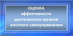 Интернет- опрос: оценка эффективности деятельности органов местного самоуправления