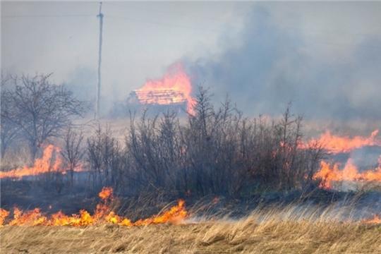 Жгли траву – спалили дом
