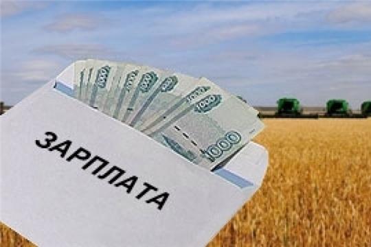 Среднемесячная заработная плата работников АПК республики выросла на 12,3%