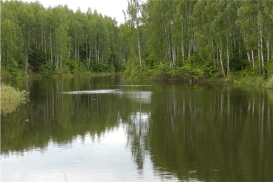 Новошальтямская сельская библиотека  Канашского района  присоединяется к фотокроссу «В объективе – водоемы Чувашии»
