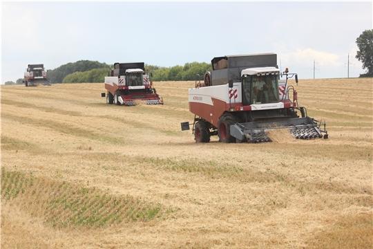 К уборке зерновых и зернобобовых культур приступили во всех районах республики