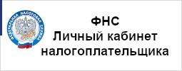 ФНС. Личный кабинет налогоплательщика