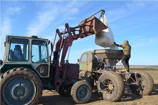 Сельхозорганизации Мариинско-Посадского района вышли на подкормку озимых зерновых культур