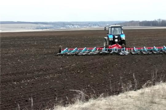 В Мариинско-Посадском районе продолжаются весенне-полевые  работы