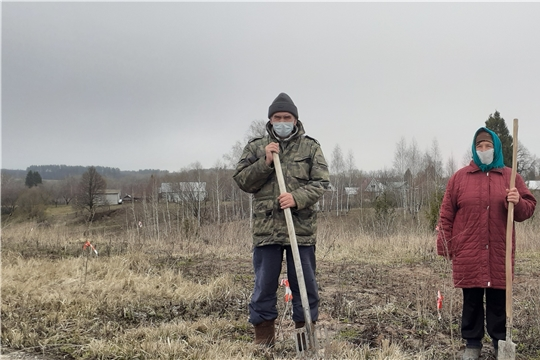 Мариинско-Посадский район присоединился к Международной акции «Сад памяти»