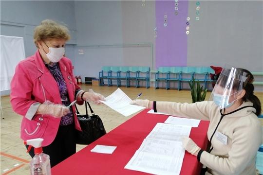 В Мариинско-Посадском районе прошло Общероссийское голосование
