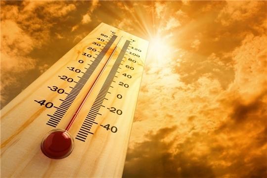 Советы от специалистов БСМП в связи с жаркой погодой