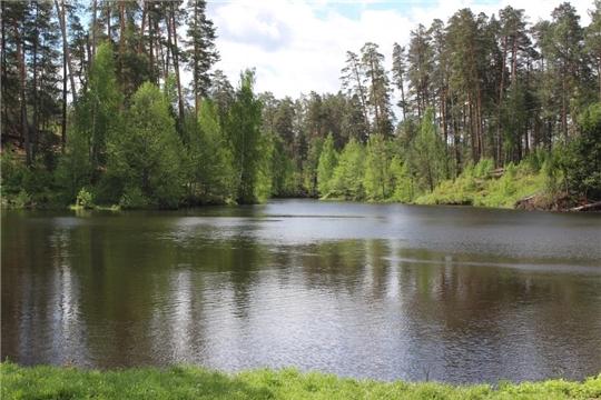 О распределении лесосечного фондана 2020 годдля заготовки гражданами древесины для собственных нужд