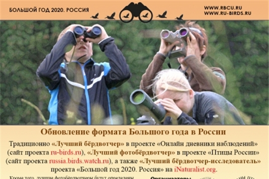 Конкурс «Большой год – 2020, Россия» – для тех, кто любит птиц