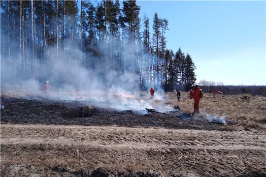 Пожароопасная ситуация в Заволжье под контролем