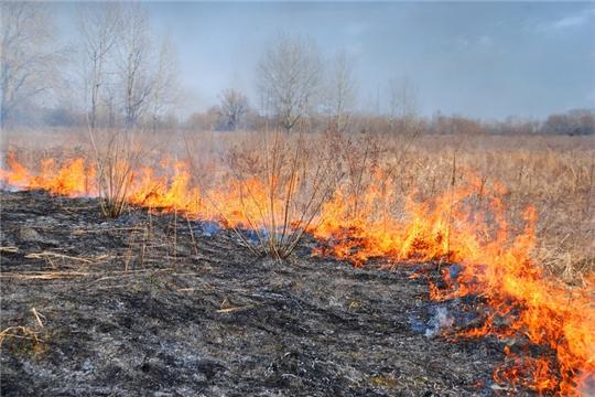 Шумерлинское лесничество призывает граждан соблюдать правила пожарной безопасности