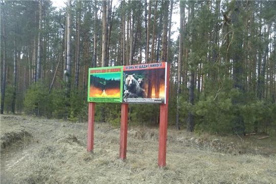 В Ибресинском лесничестве активно принимают противопожарные меры