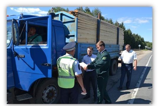 Государственные лесные инспекторы провели 1175 патрулирований лесов