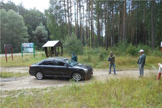 На территории Вурнарского лесничества проводится комплекс мероприятий по обеспечению ограничения пребывания граждан в лесах