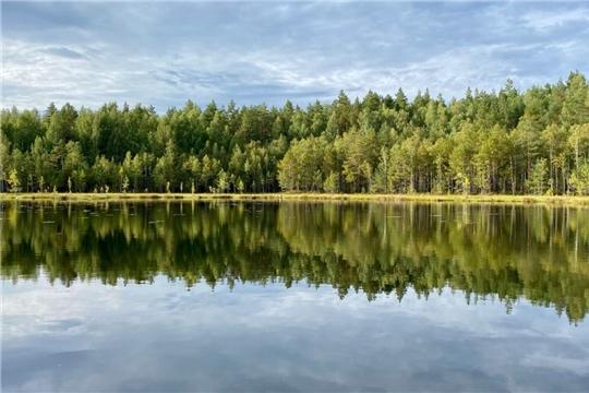 Олег Николаев призвал голосовать за древний чувашский дуб и объявил о развитии речного туризма