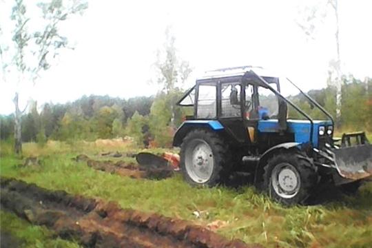 В Шумерлинском лесничестве завершили работы по обработке почвы под лесные культуры