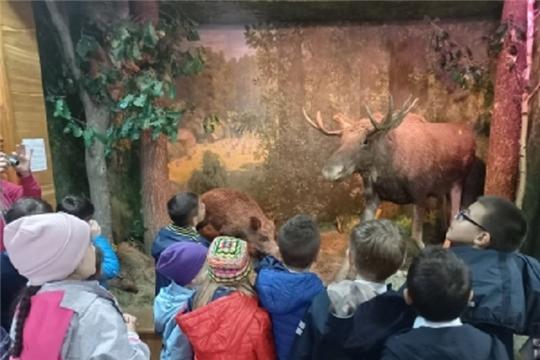 """В Музее леса провели """"Живой урок"""" для детей"""