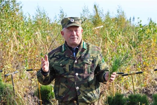Директор Чебоксарского лесничества Василий Богданов комментирует проект Стратегии социально-экономического развития республики