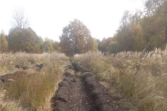 Вурнарское лесничество завершило работы по подготовке почвы под лесные культуры