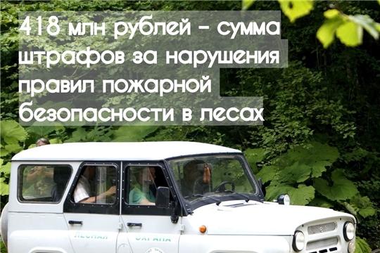 Сумма штрафов за нарушения правил пожарной безопасности в лесах составила 418 млн рублей