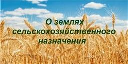 О землях сельскохозяйственного назначения