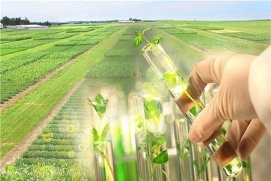 Путин поручил привлечь «Роснефть» к реализации программы развития генетических технологий в АПК