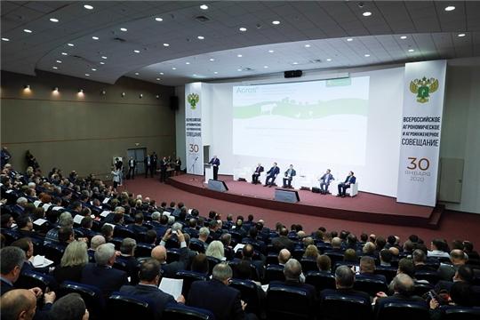 Обозначены приоритеты развития отрасли растениеводства на 2020 год