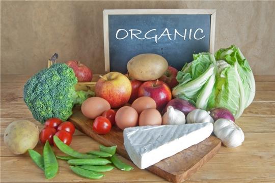 С 1 февраля на сайте Минсельхоза РФ заработал реестр производителей органической продукции