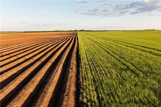 Площадь необрабатываемых сельхозугодий в Чувашии  ежегодно снижается