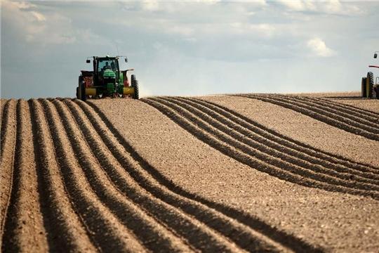 Работы по вводу в оборот необрабатываемых сельхозугодий  в Чувашии держатся на контроле