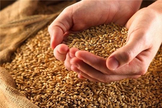 Аграрии республики готовят семена яровых зерновых и зернобобовых культур к севу