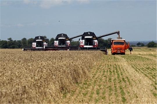 Минсельхоз России обеспечит уборочную кампанию необходимыми трудовыми ресурсами