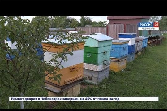 Минсельхоз Чувашии презентовал интерактивную карту пчеловодства.