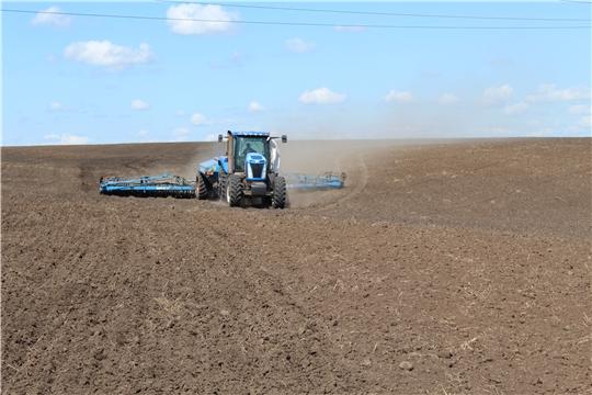 Крестьянско-фермерские хозяйства Канашского района выполнили план сева яровых зерновых культур