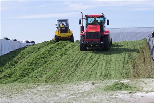 О применении ставки НДС в 10 процентов  при реализации продуктов переработки кормовых культур