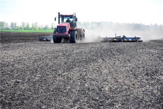 План ярового сева зерновых и зернобобовых культур в Ибресинском районе выполнен