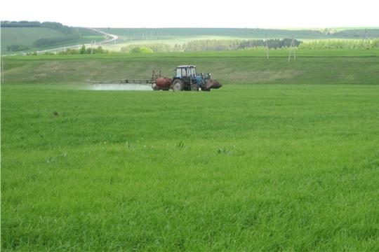 Аграрии Янтиковского района выполняют химпрополку и химзащиту посевов