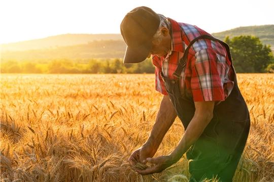 Поздравление Сергея Артамонова с Днем фермера!