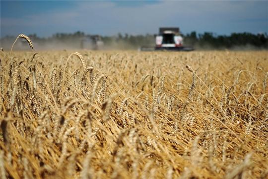 С 1 июля зерно из России можно вывозить без ограничений