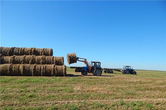 Плановые показатели по заготовке сена выполнены в хозяйствах 6 районов