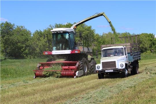 На 6 июля в полях республики скошено 73 тыс. га многолетних трав, или 73,8% к укосной площади