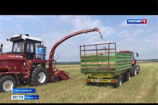 В районах идет покос многолетних трав и заготовка сенажа