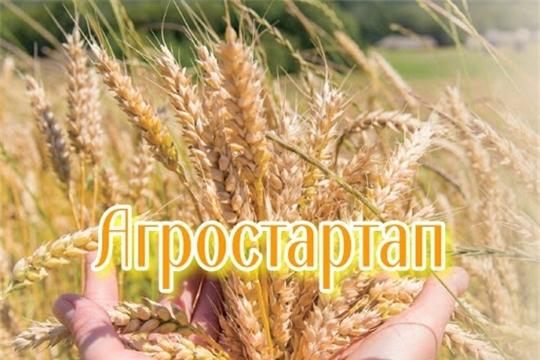Объявлены победители конкурсного отбора «Агростартап»