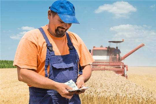 Среднемесячная заработная плата в сельском хозяйстве выросла на 12%