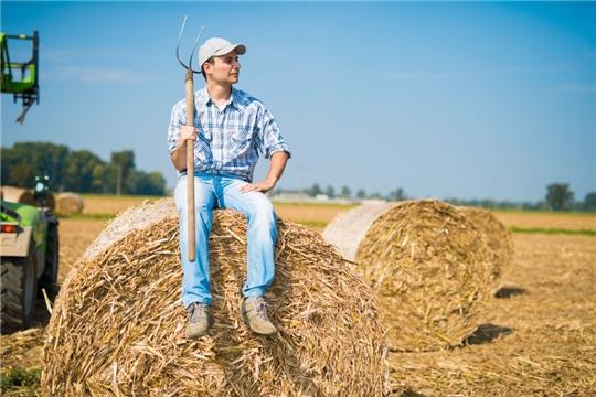 Чувашская Республика вышла на первое место в России по экспорту сена