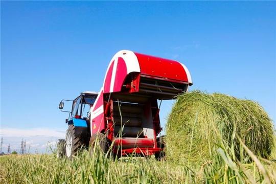 Чувашия в I полугодии экспортировала в Европу сена на $160 тыс, вышла на I место в РФ по этому показателю