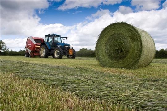 Плановые показатели по заготовке сена выполнены в 10 районах