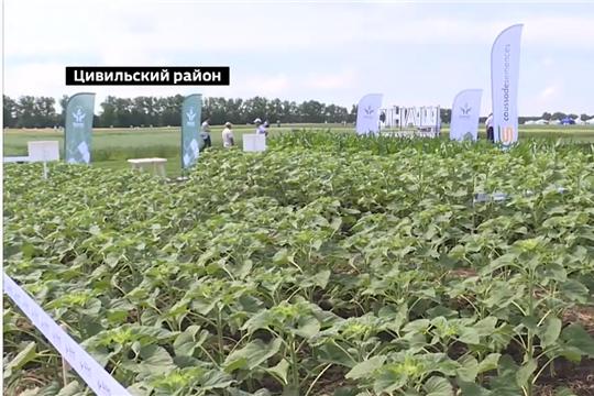 Аграриев Чувашии готовы обеспечить качественными пестицидами всех групп