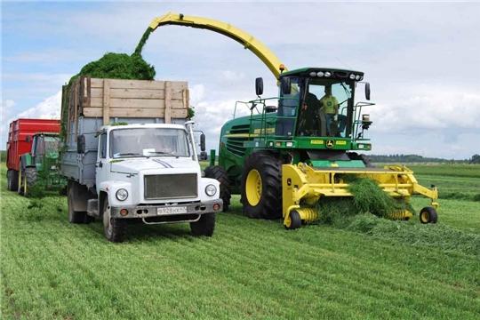 Плановые показатели по заготовке сена выполнены в 12 муниципальных районах