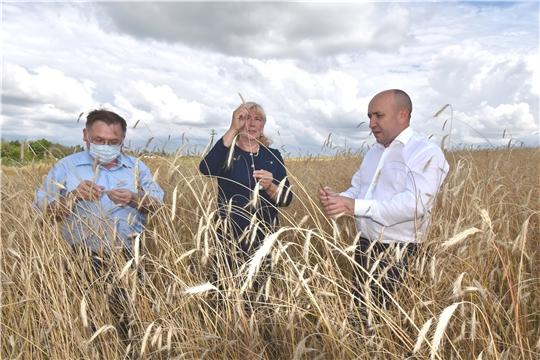 Рабочие встречи Сергея Артамонова в Козловском и Янтиковском районах